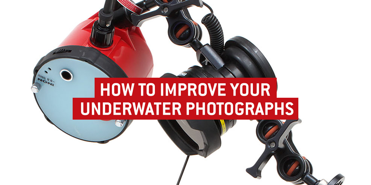 How-to-improve-your-underwater-photograph