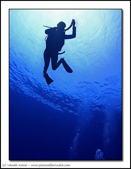 diver-descending