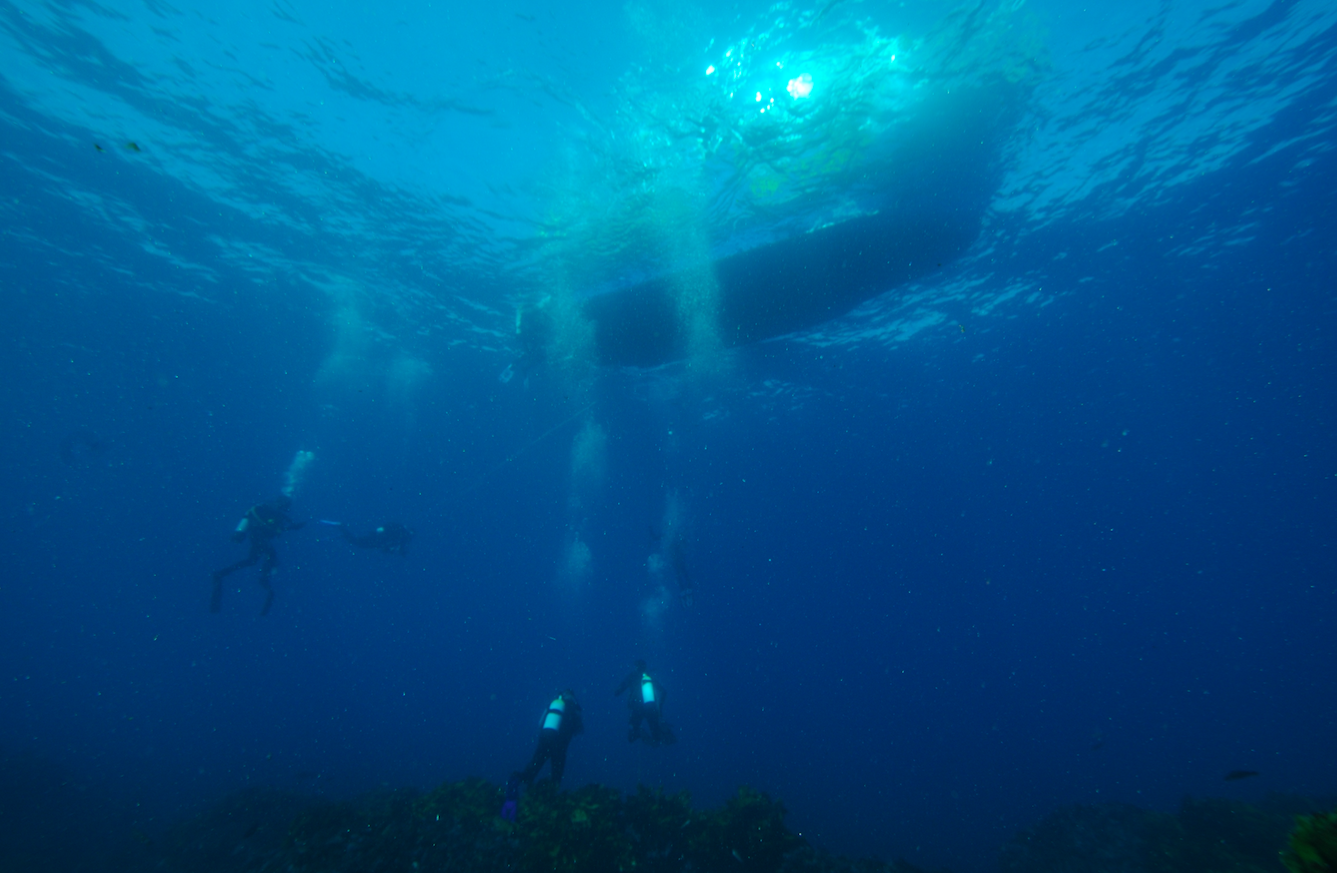 Is Boat Diving back in the Andamans