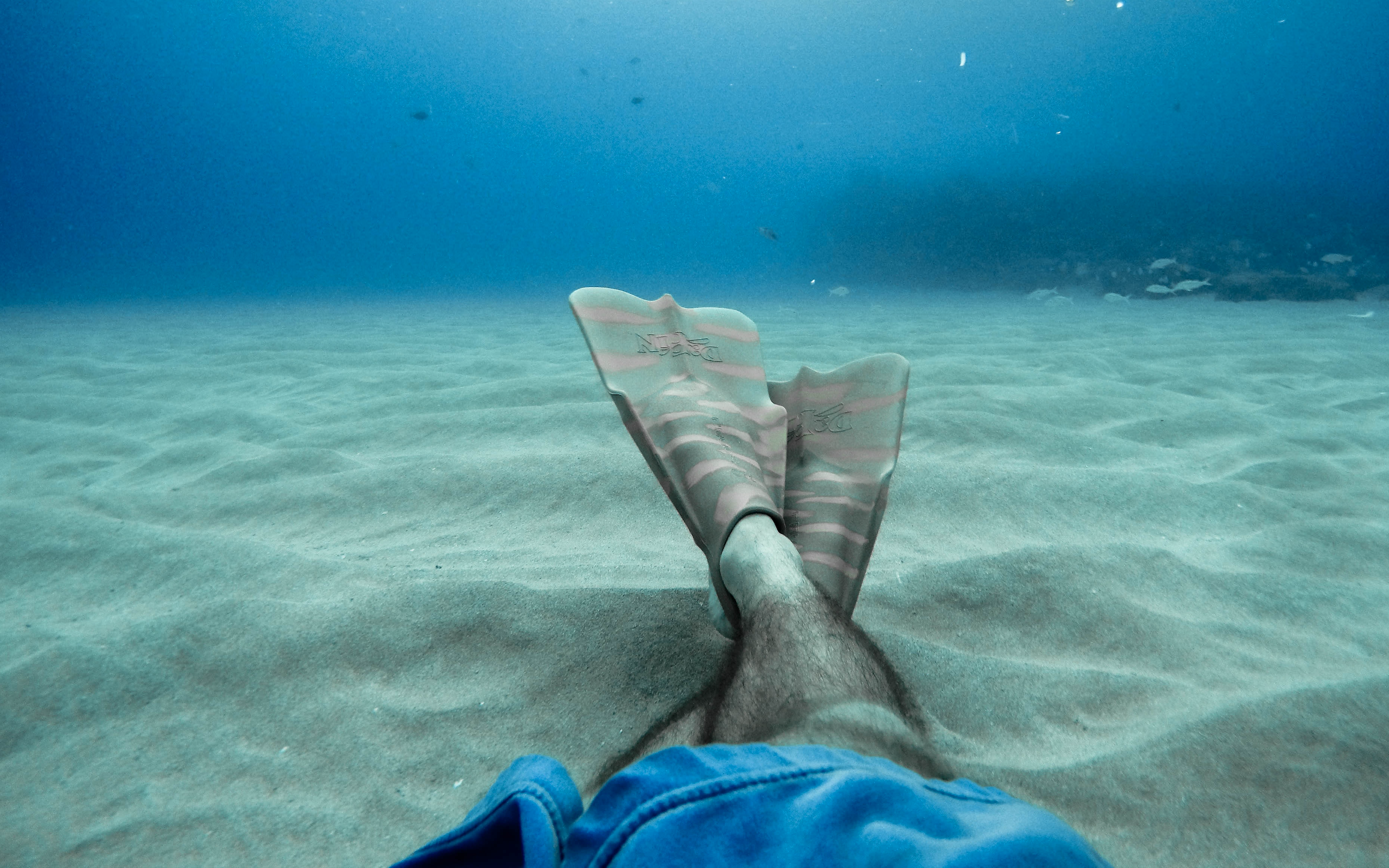 The Importance of Scuba fins