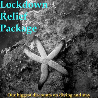 Lockdown Package