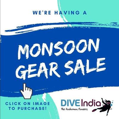 Moonson Sale